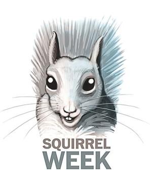 John Kelly's Squirrel Week